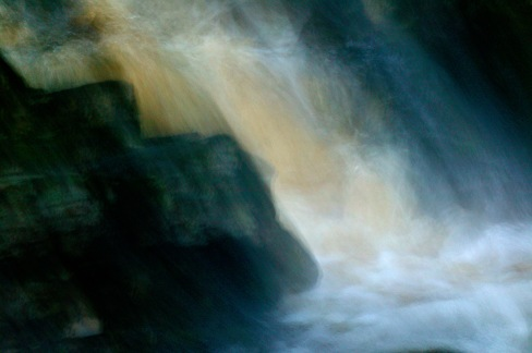 Skogsvatten